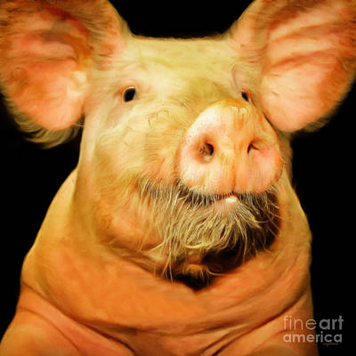 Photograph - Portrait Of A Pig 20170921 Square V2 by Wingsdomain Art and Photography