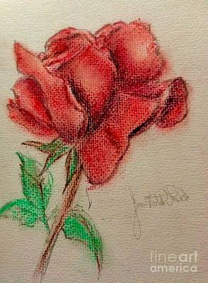 Pastel - Portrait Of A Rose by Joan-Violet Stretch