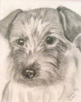 Scottish Dog Drawing - Portrait Of A Scottish Terrier by Jacquie King