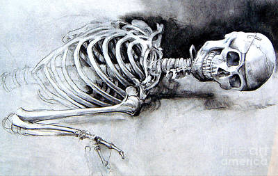 Art Print featuring the drawing Portrait Of A Skeleton by Linda Shackelford