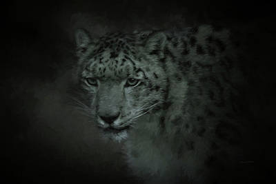 Digital Art - Portrait Of A Snow Leopard by Ernie Echols