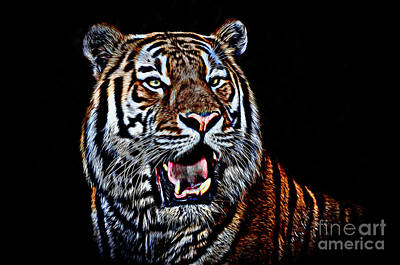 Photograph - Portrait Of A Tiger Glowing Version by Jim Fitzpatrick