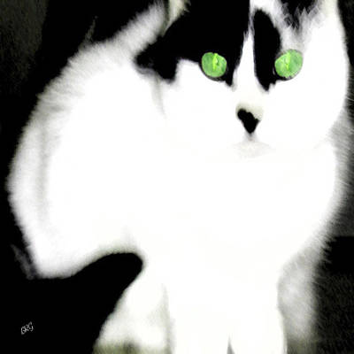 Photograph - Portrait Of A White Cat by Ben and Raisa Gertsberg