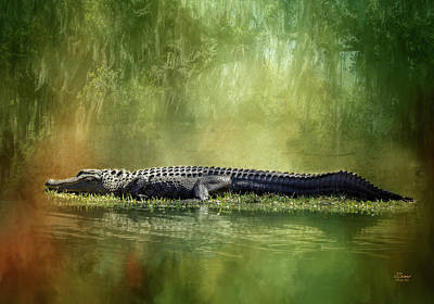 Photograph - Portrait Of Alligator by Jim Ziemer