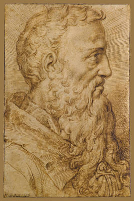 Drawing - Portrait Of Baccio Bandinelli In Profile To The Right by Bartolomeo Passerotti