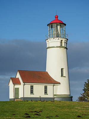 Photograph - Portrait Of Cape Blanco Lighthouse by Greg Nyquist