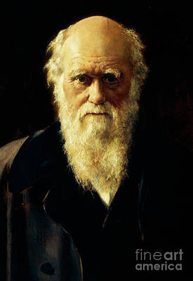 Collier Painting - Portrait Of Charles Darwin, 1883  by John Collier