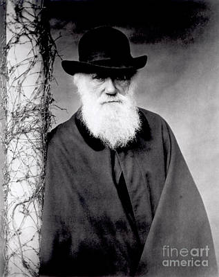 Mans Hat Photograph - Portrait Of Charles Darwin by Julia Margaret Cameron