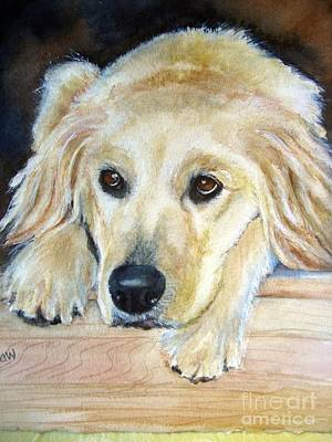Portrait Of Golden Retriever Art Print by Patricia Pushaw