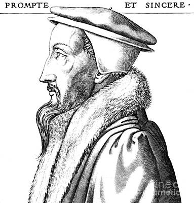 French Leaders Drawing - Portrait Of John Calvin by French School