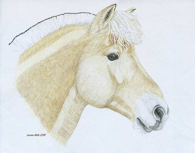 Portrait Of Levi Art Print by Laurie With