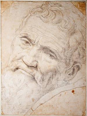Daniele Da Volterra Drawing - Portrait Of Michelangelo Buonarroti by Daniele da Volterra