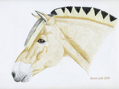 Fjord Drawing - Portrait Of Oz by Laurie With