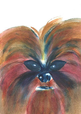 Watercolor Pet Portraits Mixed Media - Portrait Of Previn by Frank Bright