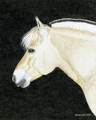 Fjord Drawing - Portrait Of Skylar, Fjord Mare by Laurie With