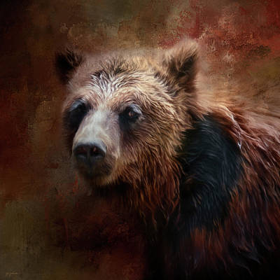 Photograph - Portrait Of The Grizzly by Jai Johnson