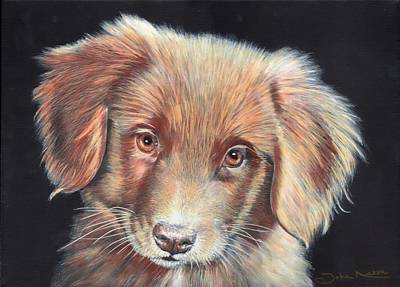 Painting - Portrait Of Toby by John Neeve