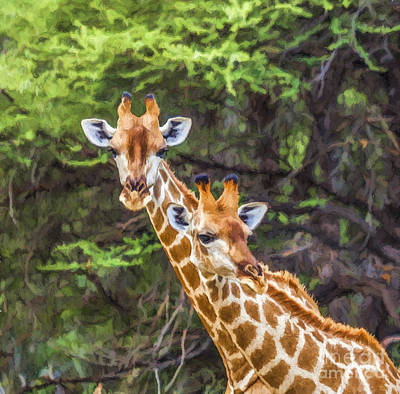 Digital Art - Portrait Of Two Giraffes In Mahango G R  Namibia by Liz Leyden