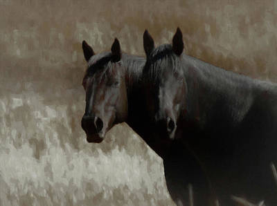 Digital Art - Portrait Of Two Horses by Ernie Echols