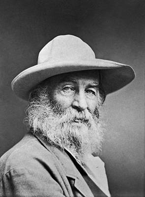 Author Photograph - Portrait Of Walt Whitman by Underwood Archives