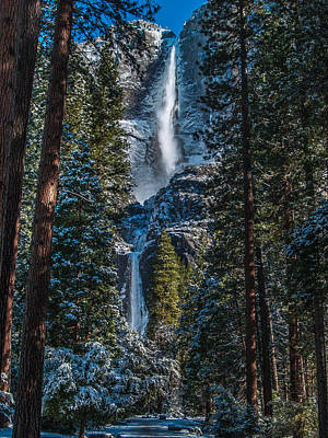 Wilderness Camping - Portrait of Yosemite Falls by Bill Gallagher