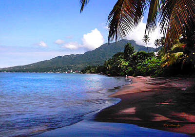 Photograph - Portsmouth Shore On Dominica Filtered by Duane McCullough