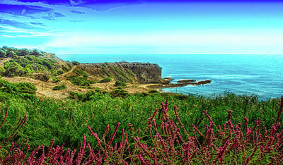 Photograph - Portuguese Bend Cove by Joseph Hollingsworth