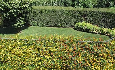 Photograph - Portuguese Hilltop Garden Porto by John Shiron