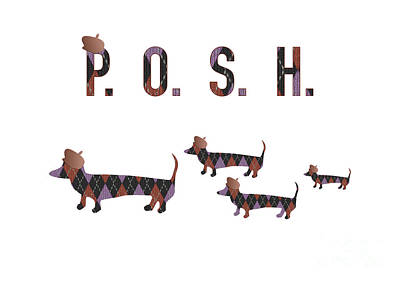 Scottish Dog Digital Art - Posh Dachshunds by Beverley Brown