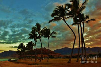 Photograph - Posing Palms At Sunset by Craig Wood