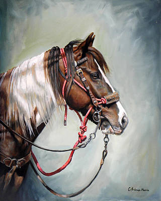 Painting - Posse Pony by Carole Andreen-Harris