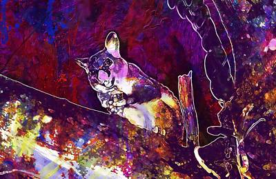Brushtail Digital Art - Possum Common Brushtail Possum  by PixBreak Art