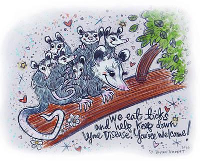 Possum Family Original