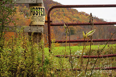 Photograph - Posted And Gate by Kathleen K Parker