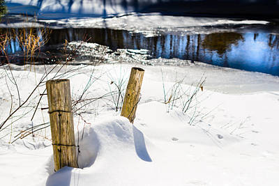 Posts In Winter Art Print