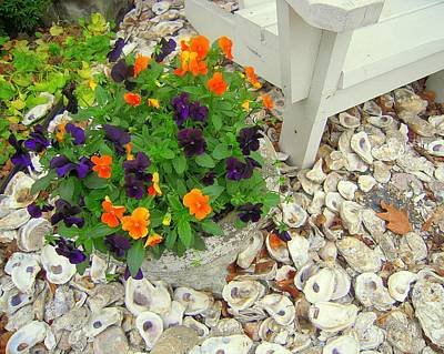 Photograph - Pot Of Posies On The Half Shell by Don Struke