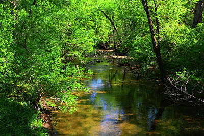 Photograph - Potamac River In Maryland by Raymond Salani III