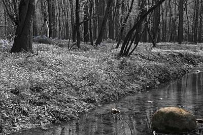 Photograph - Potato Creek by Dylan Punke