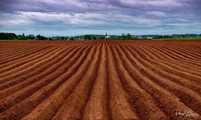 Photograph - Potato Field On Prince Edward Island by Patrick Boening
