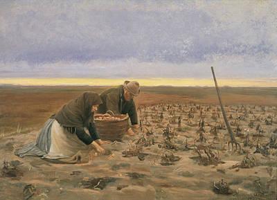 Potato Painting - Potato Harvest by Michael Ancher