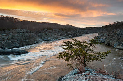 Potomac River Mather Gorge Great Falls Sunrise Art Print by Mark VanDyke