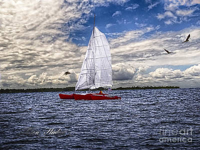 Photograph - Potomac River Virginia Sailboat by Melissa Messick