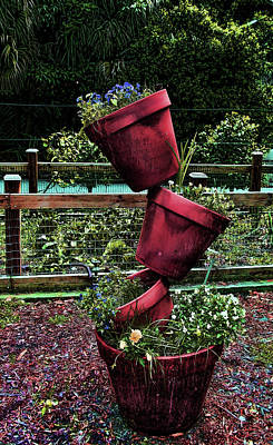 Photograph - Pots by Cathy Harper