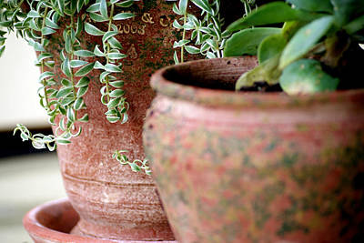 Photograph - Pots by Debi Demetrion
