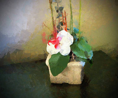 Photograph - Potted Flower by Cedric Hampton