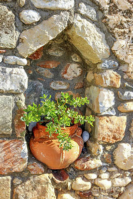 Photograph - Potted Plant In Niche In Stone Wall In Greek Village by Susan Vineyard