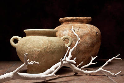 Pottery With Branch I Art Print by Tom Mc Nemar