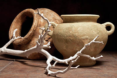 Jars Photograph - Pottery With Branch II by Tom Mc Nemar