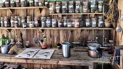 Photograph - Potting Shed by Mick Flynn