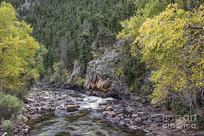 Photograph - Poudre In Winter by Lynn Sprowl
